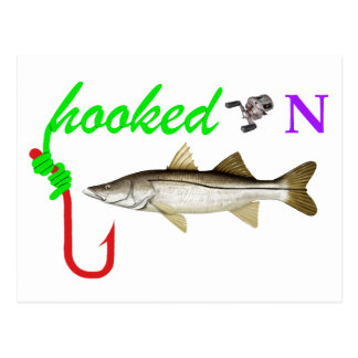 hooked on snook postcard