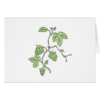Hop Plant Climbing Drawing Card