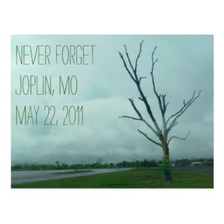 HOPE (Joplin 2011) Postcard