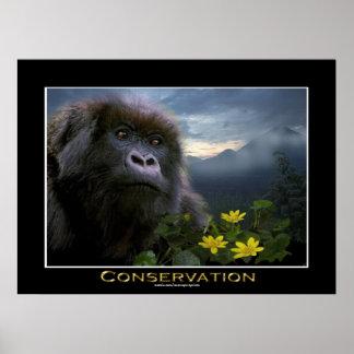 """HOPE"" Mountain Gorilla Africa Wildlife Art Poster"