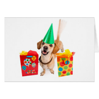 Hope Your Tail Gets Wagged Birthday Card