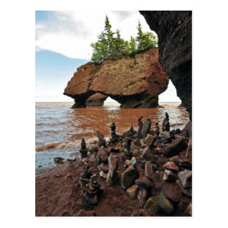 Hopewell Flowerpot Rocks New Brunswick Postcard