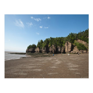 Hopewell Rocks and The Ocean Tidal Exploration Postcard