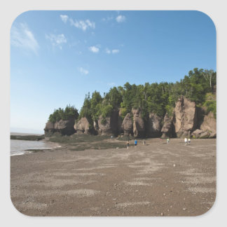 Hopewell Rocks and The Ocean Tidal Exploration Stickers