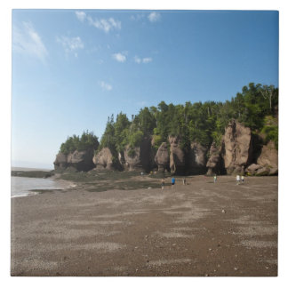 Hopewell Rocks and The Ocean Tidal Exploration Tiles
