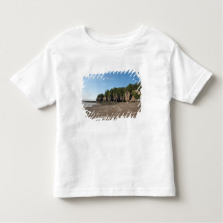 Hopewell Rocks and The Ocean Tidal Exploration Toddler T-shirt