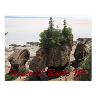 Hopewell Rocks during low tide NB Postcard