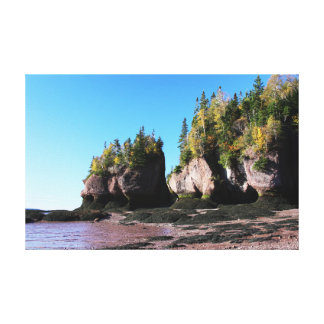 Hopewell Rocks with Foliage Gallery Wrap Canvas