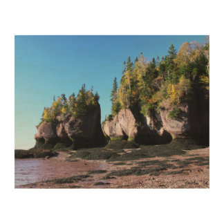Hopewell Rocks with Foliage Wood Canvases