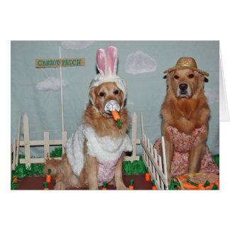 Hoppy Golden Easter Card