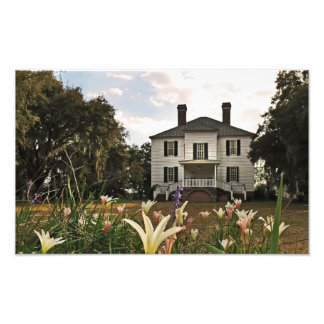 Hopsewee Plantation Georgetown County Photo Print