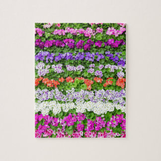 Horizontal rows of various colored flowers puzzles