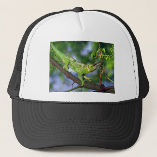horned chameleon trucker hat