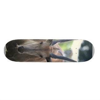 Horned Eland Skateboard