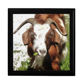 Horned Goat Grazing Gift Box