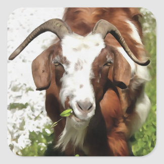 Horned Goat Grazing Square Sticker