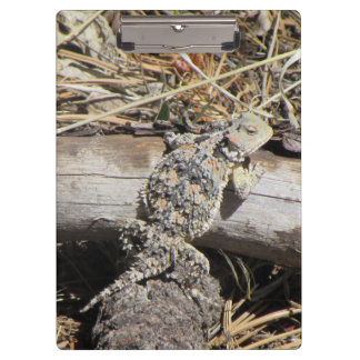 Horned Lizard Clipboard