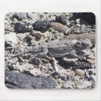 horned toad mouse pad