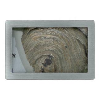 Hornets Nest Belt Buckles