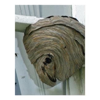 Hornets Nest Personalized Letterhead