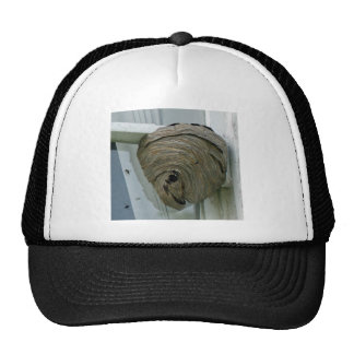 Hornets Nest Trucker Hat