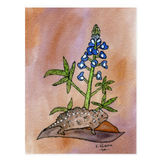 Horny Toad with Bluebonnet Postcard