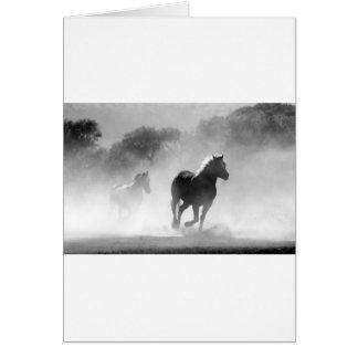 horse-430441 card