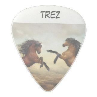 horse acetal guitar pick