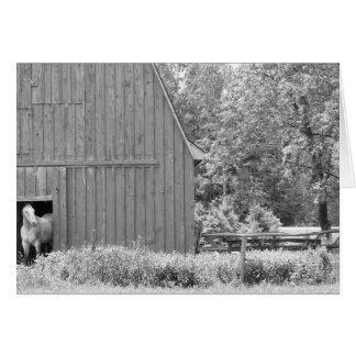 Horse and Barn Notecard