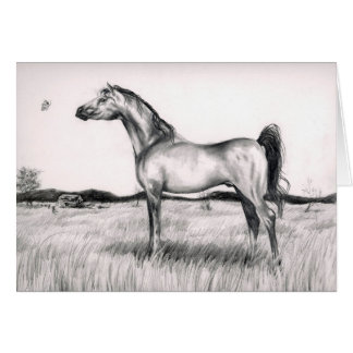 Horse and Butterfly Drawing Card