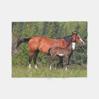 Horse and Foal Photography Fleece Blanket
