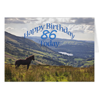 Horse and landscape 86th birthday card
