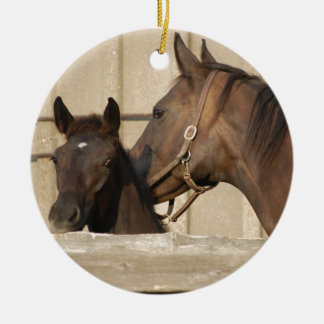 Horse and Pony Ceramic Ornament