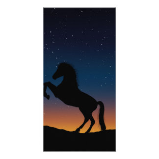 Horse Animal Nature Picture Card