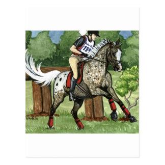 Horse Art APPALOOSA Eventing Postcard