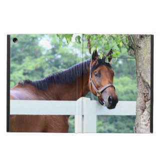 Horse at Fence Powis iPad Case