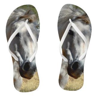Horse Called Snow White, Flip Flops