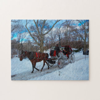 Horse Carriage in Central Park New York. Jigsaw Puzzle