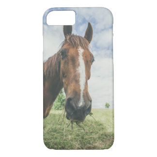 Horse chewing on grass in rural environment iPhone 7 case