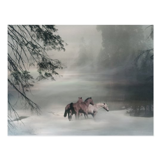 Horse Christmas, Holiday Postcards