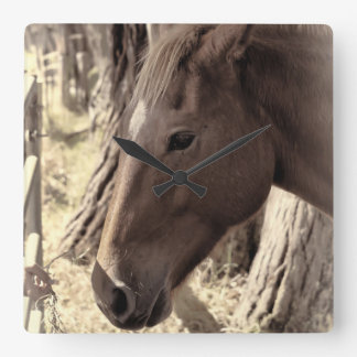 Horse Close Up Wall Clocks