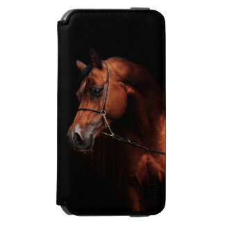 horse collection. arabian bay incipio watson™ iPhone 6 wallet case
