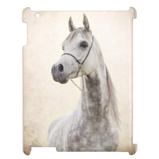 horse collection. arabian cover for the iPad