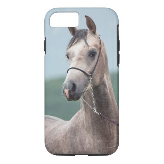 horse collection. arabian gray iPhone 8/7 case