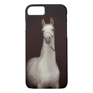 horse collection. arabian iPhone 8/7 case