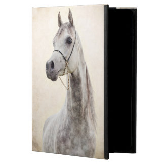 horse collection. arabian powis iPad air 2 case