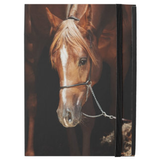 "horse collection. arabian red iPad pro 12.9"" case"
