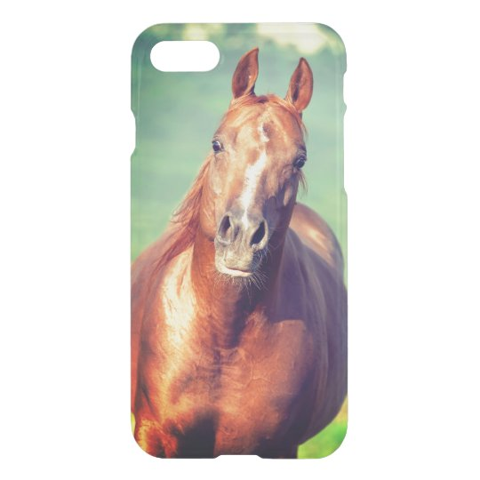 horse collection. arabian red iPhone 8/7 case
