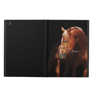 horse collection. arabian red powis iPad air 2 case