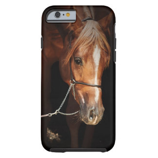 horse collection. arabian tough iPhone 6 case